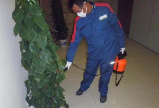 聊城宾馆防治蟑螂